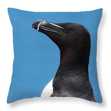 Razorbill Profile Throw Pillow by Bruce J Robinson