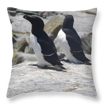 Razorbills 2 Throw Pillow by James Petersen