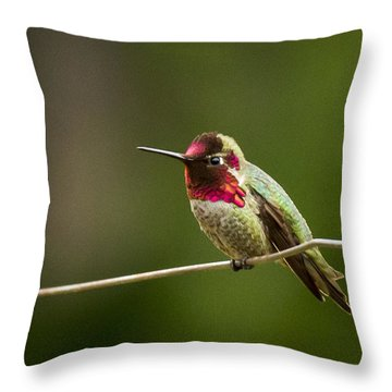 Ready To Zoom Throw Pillow by Jean Noren