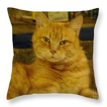 Really? Throw Pillow by Jacquelyn Roberts