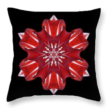 Red And White Amaryllis Vii Flower Mandala Throw Pillow by David J Bookbinder