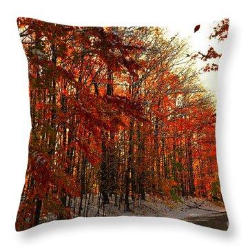 Red Autumn Road In Snow Throw Pillow by Terri Gostola