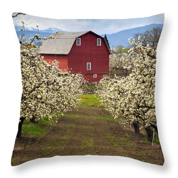 Red Barn Spring Throw Pillow by Mike  Dawson