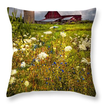 Red Barns In The Wildflowers Throw Pillow by Debra and Dave Vanderlaan