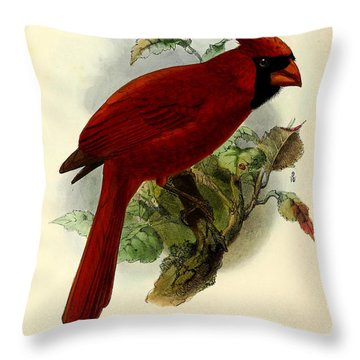 Red Cardinal Throw Pillow by J G Keulemans