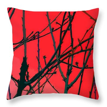 Red Throw Pillow by Carol Lynch