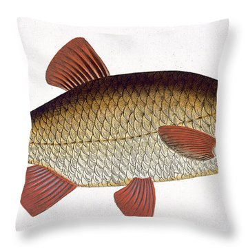 Red Carp Throw Pillow by Andreas Ludwig Kruger