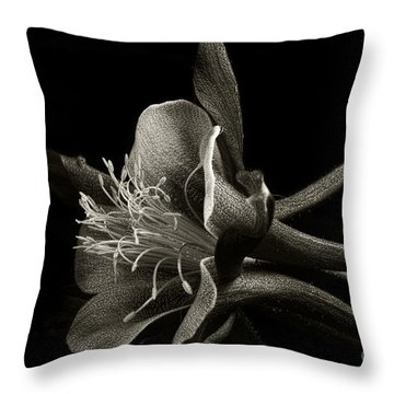 Red Columbine In Black And White Throw Pillow by Karen Slagle