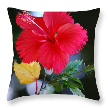 Red Hibiscus Flower Throw Pillow by Michelle Wrighton