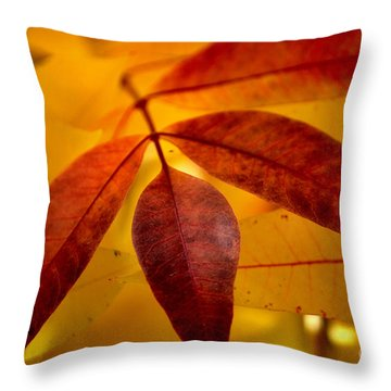 Red Leaves At Dawn Throw Pillow by Deb Halloran