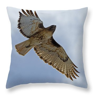 Red-tail Hawk #3094 Throw Pillow by J L Woody Wooden