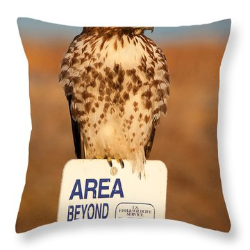 Red Tailed Hawk Lower Klamath National Wildlife Refuge Northern California Throw Pillow by Ram Vasudev