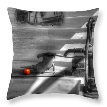 Red Tomato By Sink Throw Pillow by Dan Friend