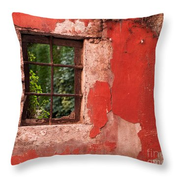 Red Wall Throw Pillow by Rick Piper Photography