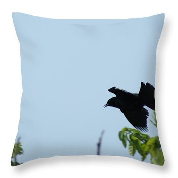 Red Winged Blackbird In Taking Off Throw Pillow by Andrew Lahay