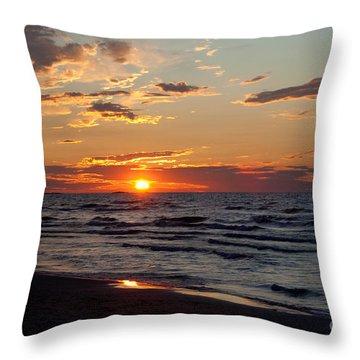 Reflection Throw Pillow by Barbara McMahon