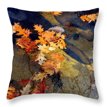 Reflection Throw Pillow by Marcia Lee Jones