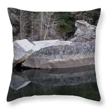 Reflections Throw Pillow by Priya Ghose