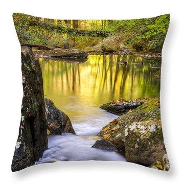 Reflective Pools Throw Pillow by Debra and Dave Vanderlaan
