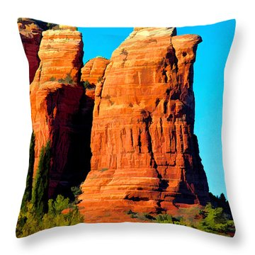 Regular Or Decaf? Throw Pillow by Jon Burch Photography