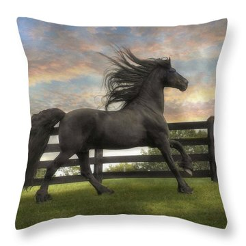Remains Of The Day Throw Pillow by Fran J Scott
