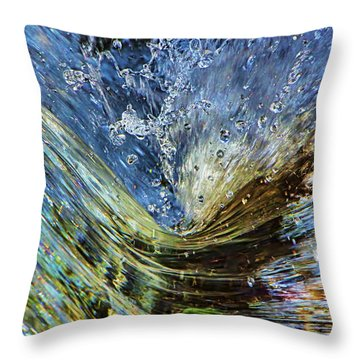 Resistance Is Futile Throw Pillow by Gary Holmes
