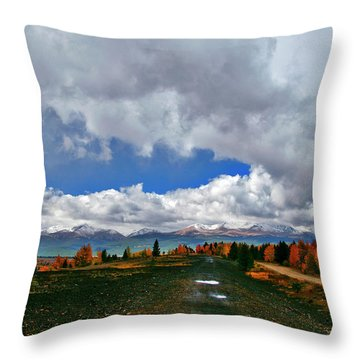 Resisting Change Throw Pillow by Jeremy Rhoades