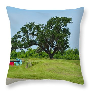 Rest In Peace 1 Throw Pillow by Alys Caviness-Gober