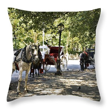 Rest Stop - Central Park Throw Pillow by Madeline Ellis