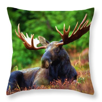Resting In Peace Throw Pillow by Ayse Deniz