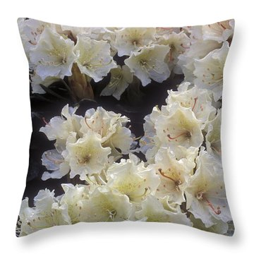 Rhododendrons Throw Pillow by Anonymous