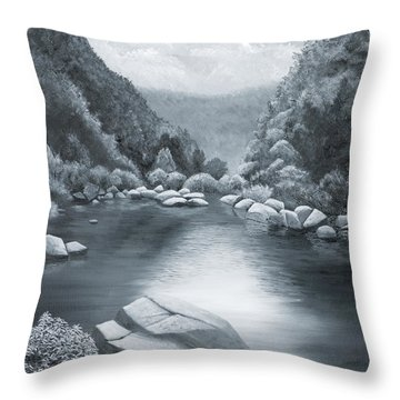 Richland Creek Throw Pillow by Garry McMichael