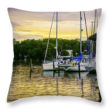 Ripples At Sunset Throw Pillow by Brian Wallace