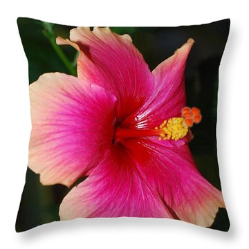 Rise And Shine - Hibiscus Face Throw Pillow by Connie Fox