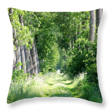 Road To Bruges Throw Pillow by Carol Groenen