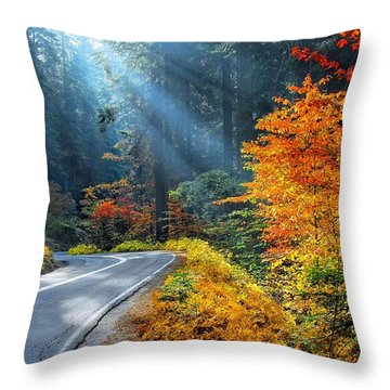 Road To Glory  Throw Pillow by Lynn Bauer
