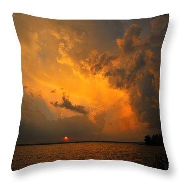 Roar Of The Heavens Throw Pillow by Terri Gostola