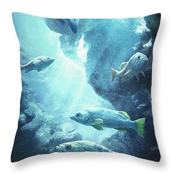 Rockfish Sanctuary Throw Pillow by Javier Lazo