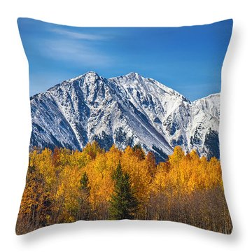 Rocky Mountain Autumn High Throw Pillow by James BO  Insogna