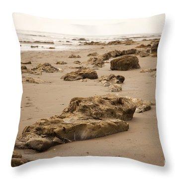 Rocky Shore 2 Throw Pillow by Amanda Barcon