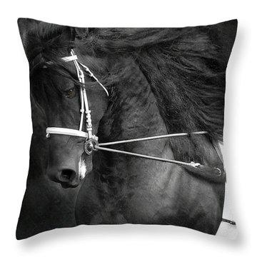 Romke 401 Long Line Throw Pillow by Fran J Scott
