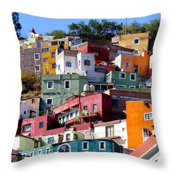 Rooms With Views Throw Pillow by Douglas J Fisher