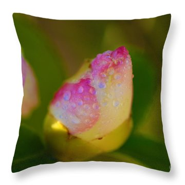 Rose Bud Throw Pillow by Cheryl Young