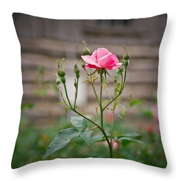Rose Of Independence Throw Pillow by Linda Unger