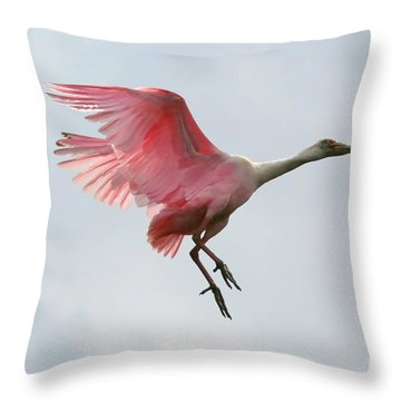 Roseate Spoonbill In Flight Throw Pillow by Carol Groenen