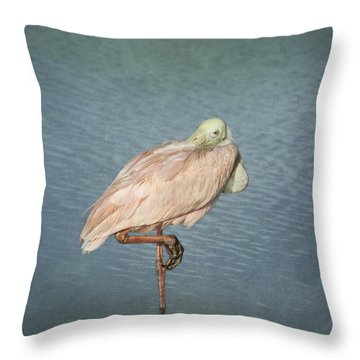 Roseate Spoonbill Throw Pillow by Kim Hojnacki