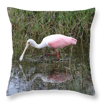 Roseate Spoonbill Reflection Throw Pillow by Carol Groenen