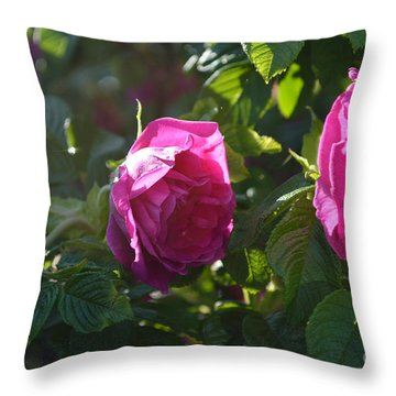 Roses At Sunrise Throw Pillow by Alys Caviness-Gober
