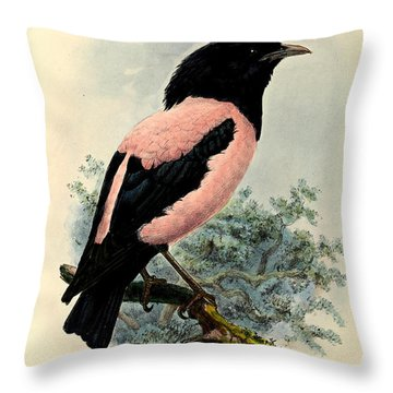 Rosy Starling Throw Pillow by J G Keulemans