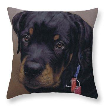 Rottweiler Dog Throw Pillow by Karie-Ann Cooper